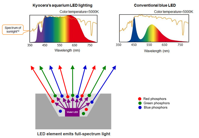 kyocera_develops_world_s_first_full-spectrum_led_aquarium_lighting.-cps-63160-image.cpsimage.jpg